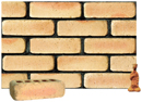 Golden Cream Color Cobble Brick with Shade