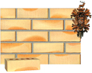 Golden Cream Color Smooth Face Brick with Sunset Clinker Shade