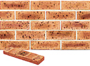 Super Red Color Smoothface Brick Veneer with Shade